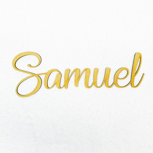 Name Cut Out Door Plate